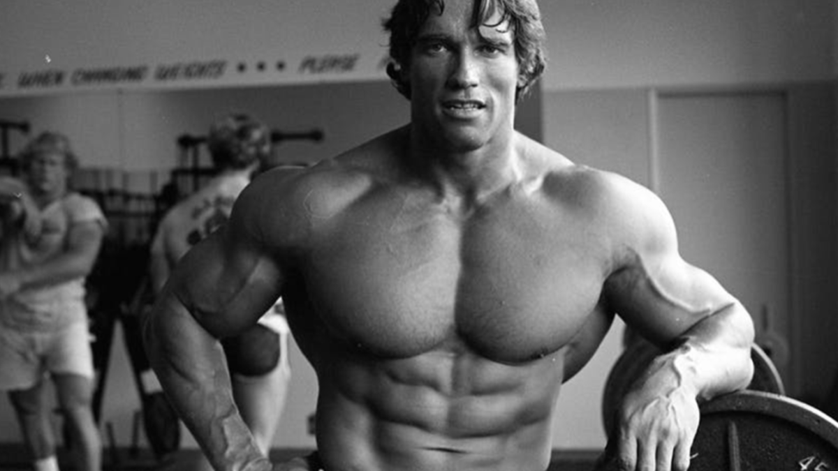 Arnold Schwarzenegger photo - Arnold Gym