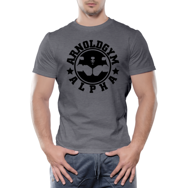Alpha-Arnold-Gym-workout-training-grey-t-shirt_top